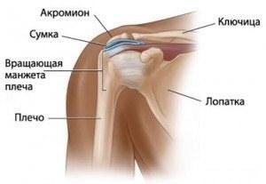 a vállízület csontszövetének károsodása