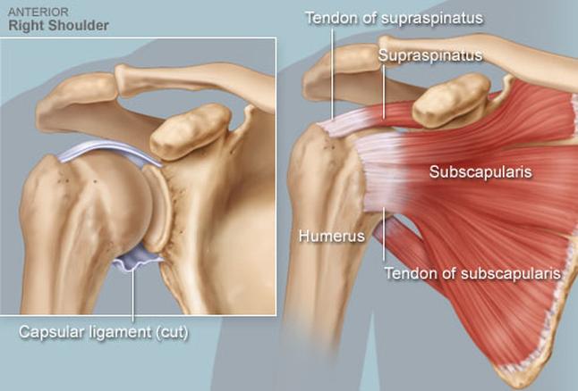 Térdkopásról általában | buggarage.huán István ortopéd sebész praxisa