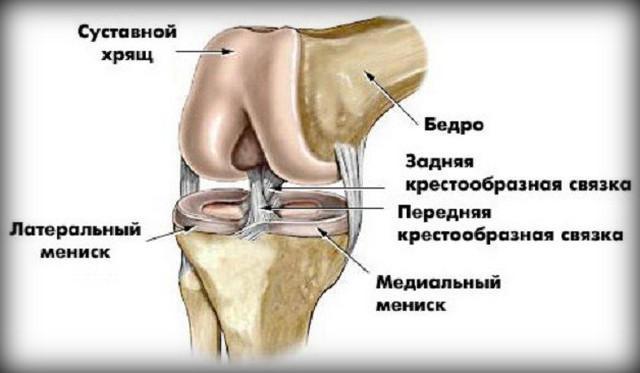 heves fájdalom a térdízületekben)