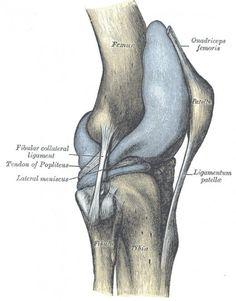patellofemoral arthrosis hogyan kell kezelni)