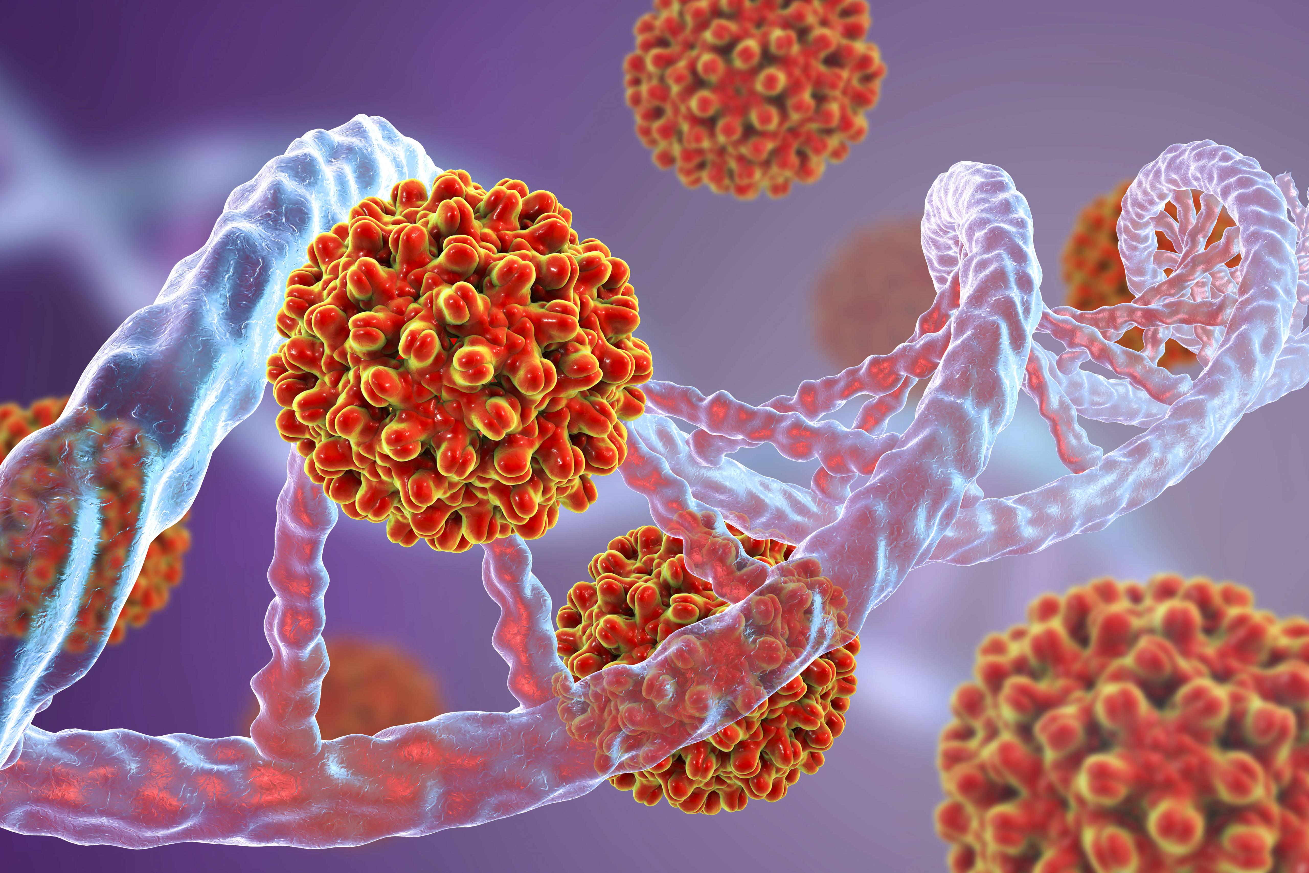 vírusos hepatitis ízületi fájdalommal