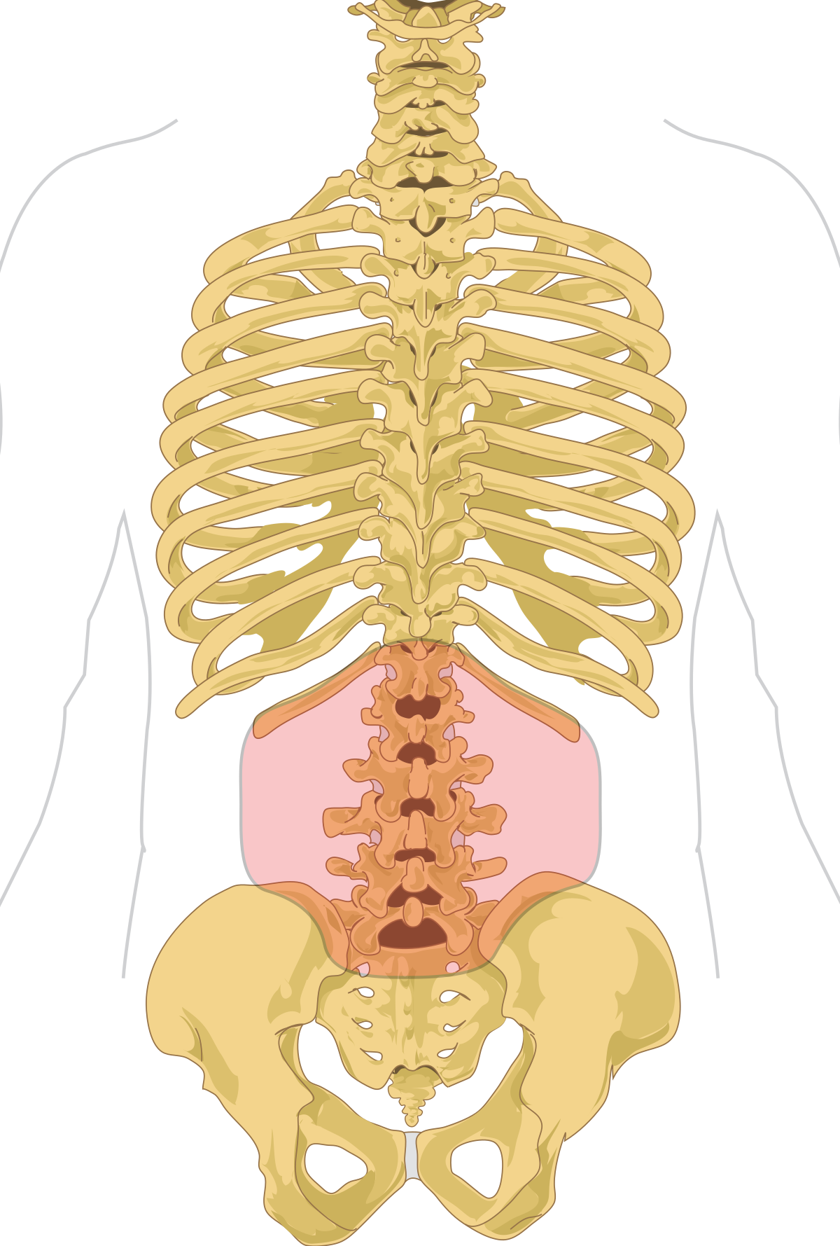 Ízületi és gerincfájdalmak