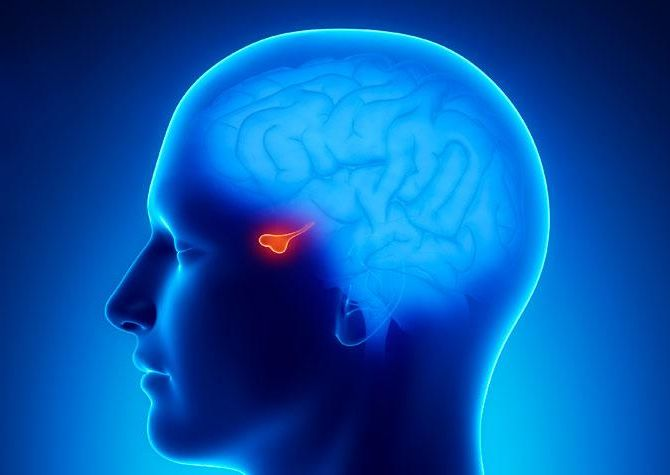 ízületi fájdalom hypophysis adenómával)