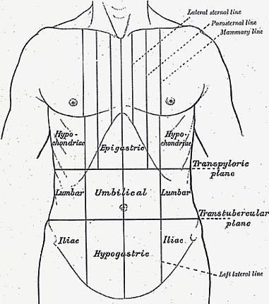 bal oldali ágyéki fájdalom nőknél