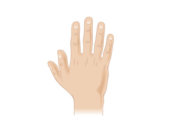 a hüvelykujj kezelés torna)