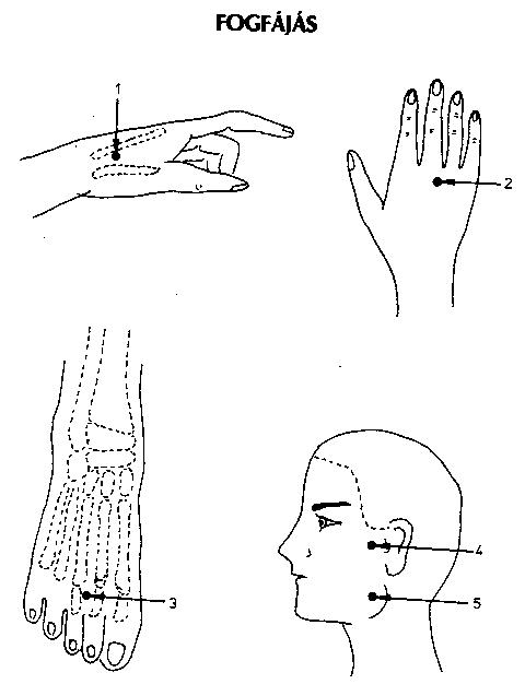 akupresszúra a térdízület fájdalmában)