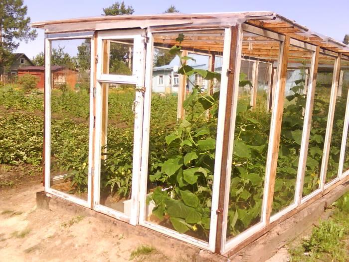 Üveg hálószoba az erdőben - üvegház és kerti pavilon egyben - Lakberendezés trendMagazin