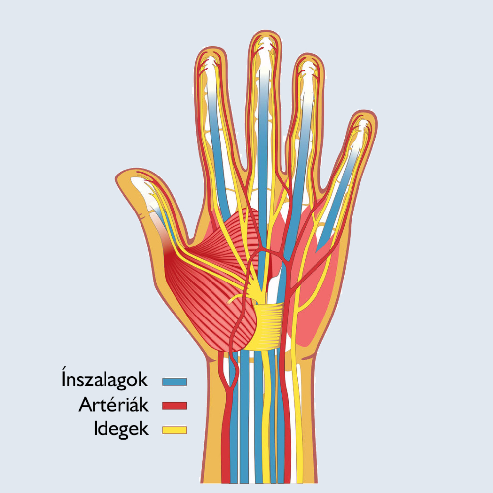 rheumatoid arthritis a kezekben