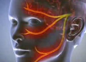 térdfájdalom álomban ízületi kezelés viburnummal